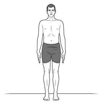 Упражнения для исправления сколиоза у взрослых