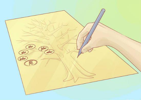 Генеалогическое дерево своими руками шаг 5
