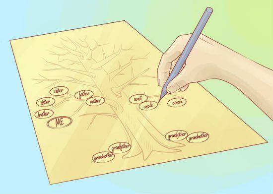 Генеалогическое дерево своими руками шаг 6