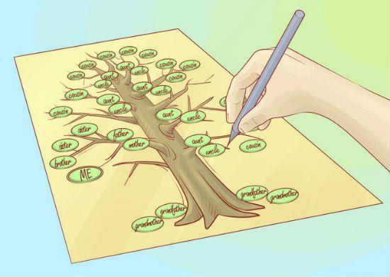 Генеалогическое дерево своими руками шаг 8