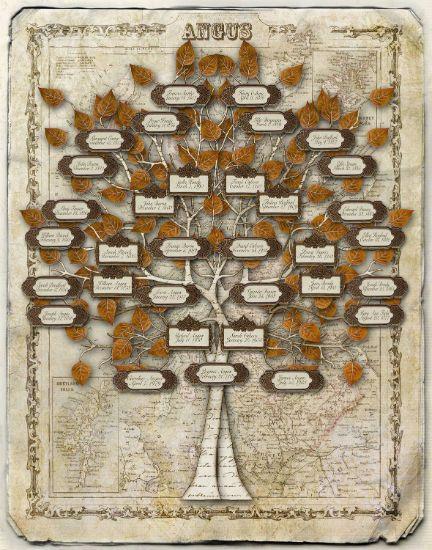 Схемы генеалогического дерева 6