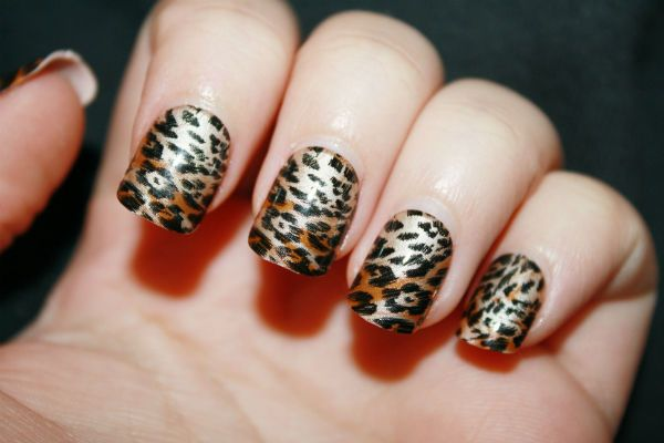 Тигровые или леопардовые мотивы фото