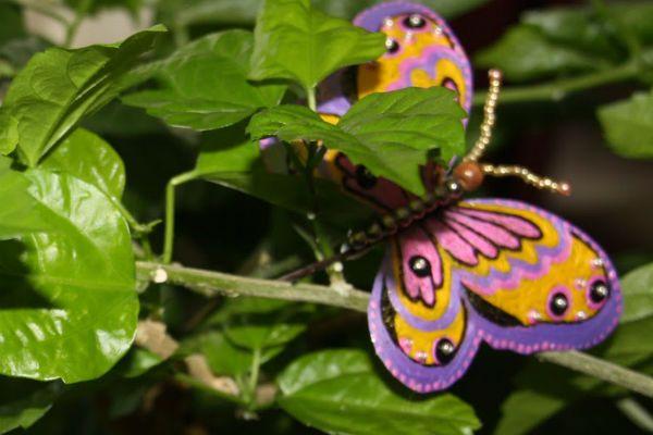 Разукрасьте бабочку фото