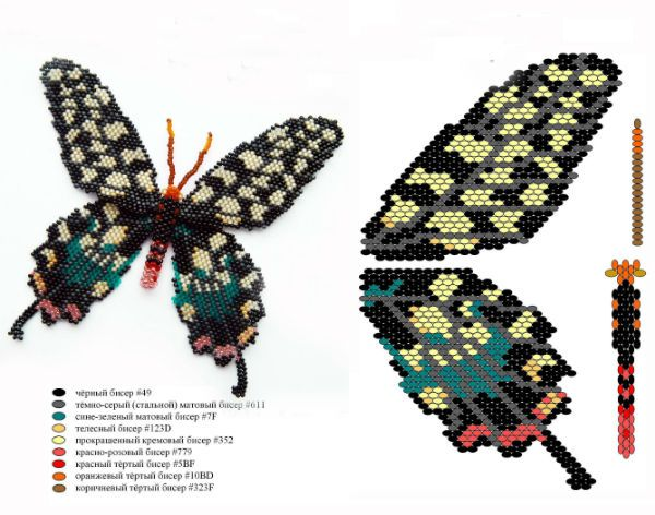 Схема бабочки фото