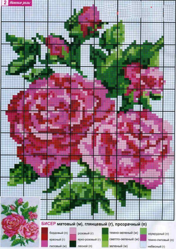 Схема роз фото