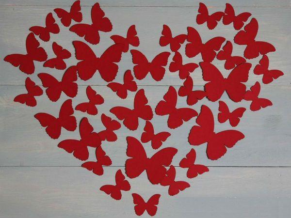 Панно из бабочек в виде сердца  фото