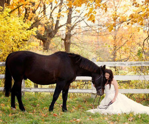 Невеста с лошадью фото
