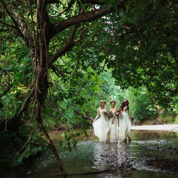 Три девушки в лесу фото
