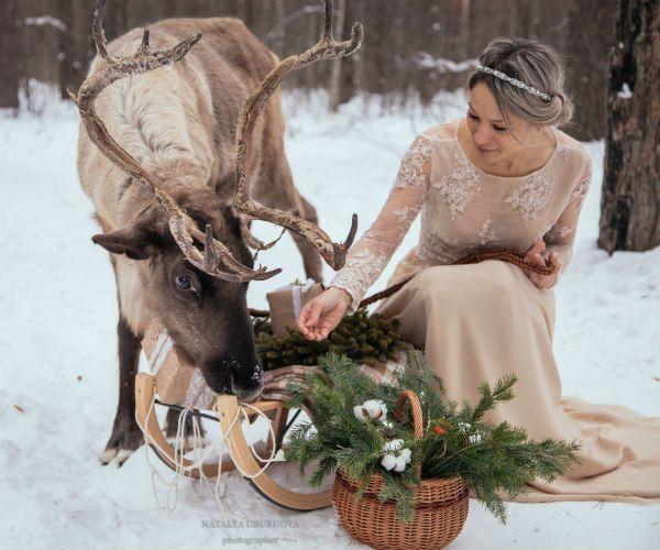 Невеста с оленем на природе фото