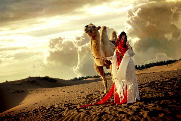 Красавица пустыни фото