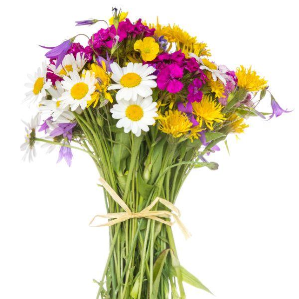 Букет из полевых цветов 5 фото