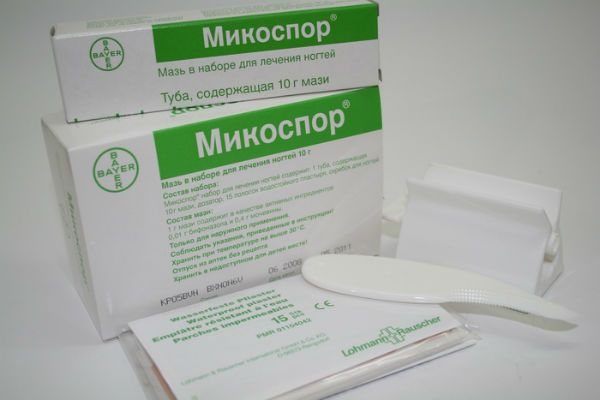 Микоспор фото