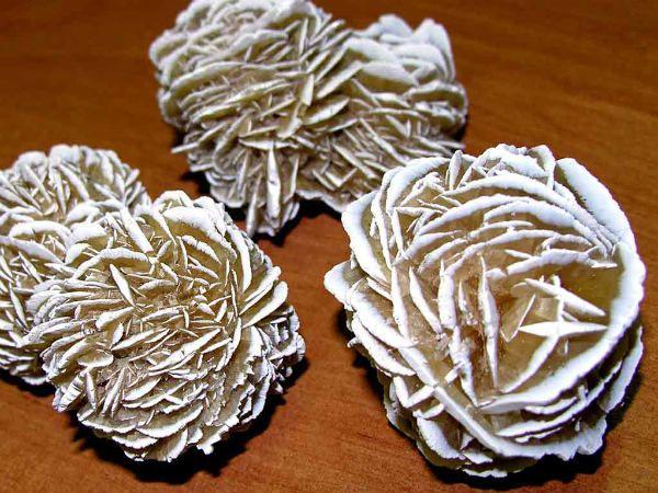 Роза пустыни фото