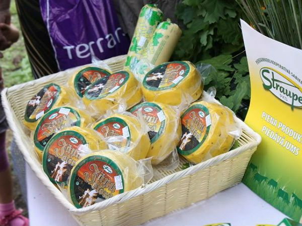 Сыр Яню с тмином фото