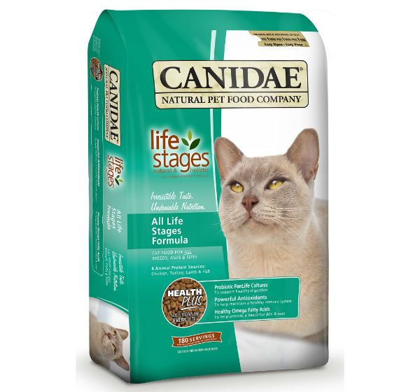 Eagle Pack Cat Canidae фото