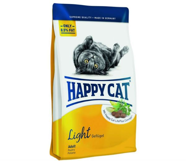 Happy Cat фото