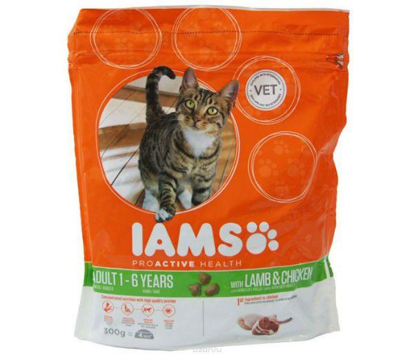 Чем кормить стерилизованных кошек советы ветеринаров