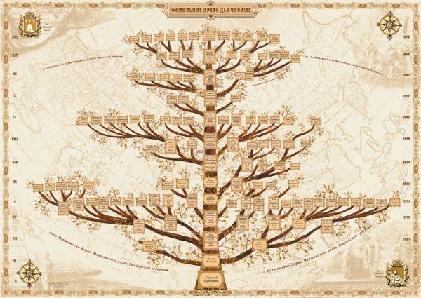 Схема оформления генеалогического дерева ветви фото