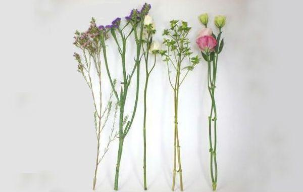 Свадебный букет из полевых цветов подготовка цветов фото