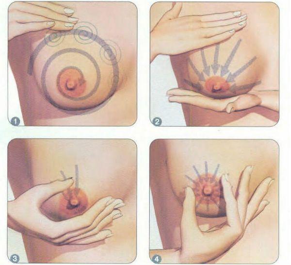 Техника сцеживания грудного молоко руками фото
