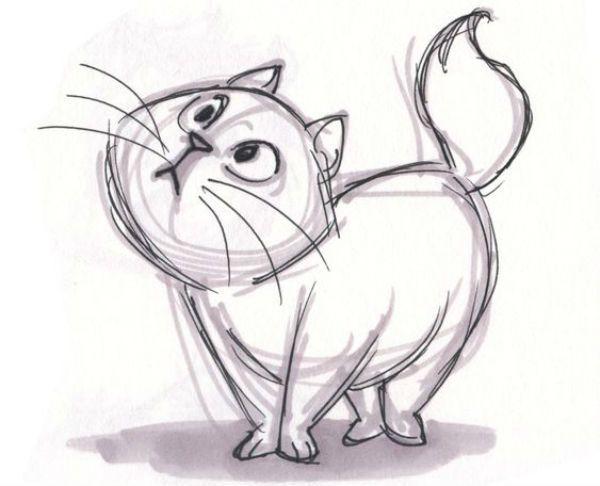 Толстый кот фото