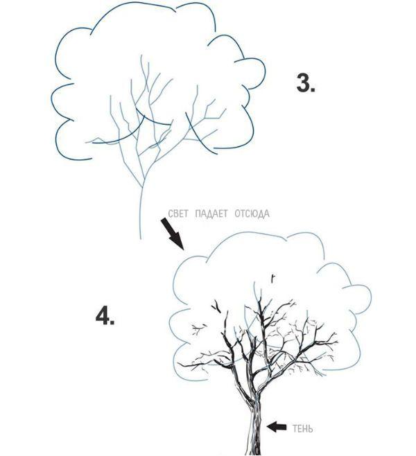 Дерево шаг 2 фото
