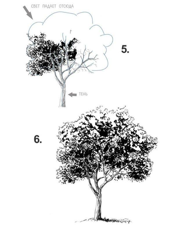Дерево шаг 3 фото