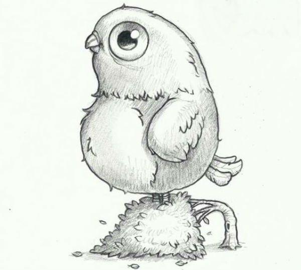 Птица фото