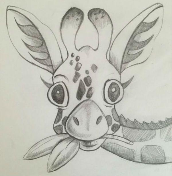 Жираф фото
