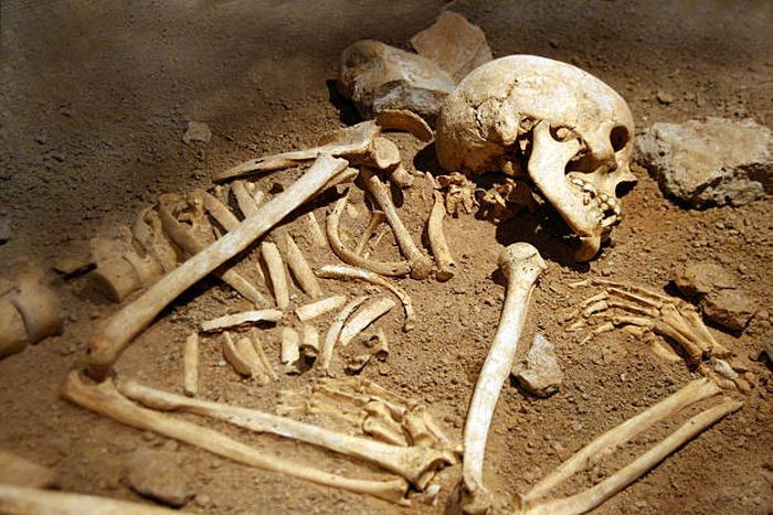 Кости трупа фото