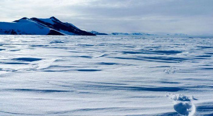 Арктические пустыни фото