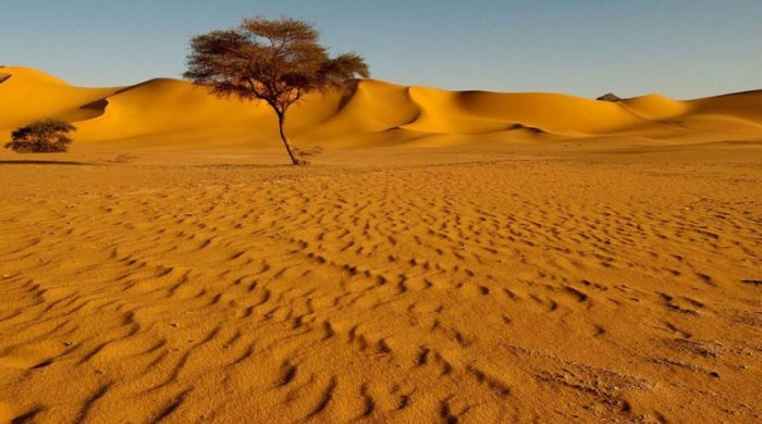 Песчаные пустыни фото