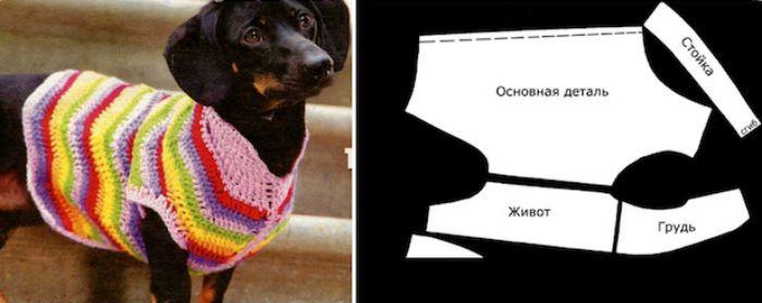 такса выкройка свитер фото