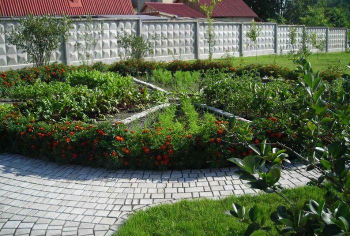 варианты дизайна сада и огорода фото