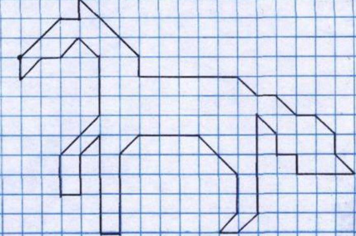 лошадка фото