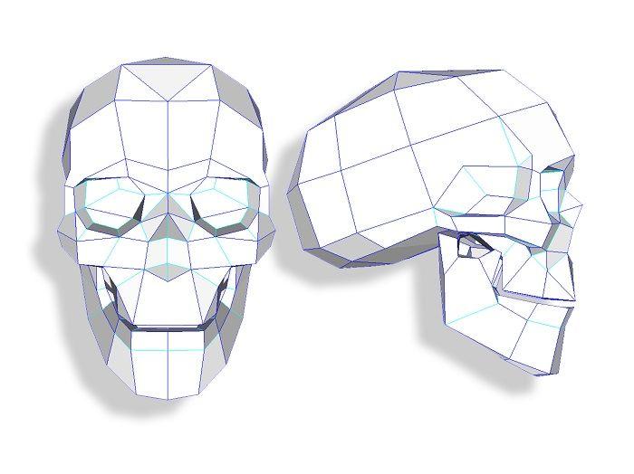 Полигональный чертеж черепа