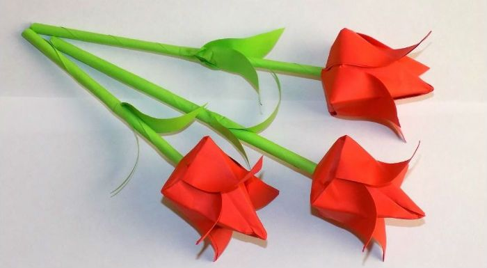 Объемные тюльпаны фото
