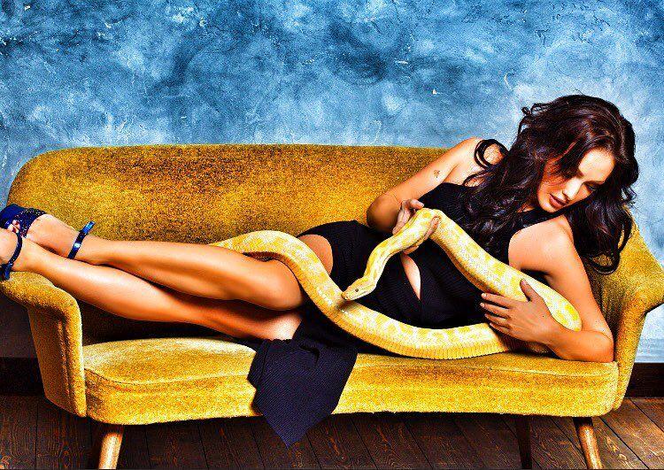 Крайт со змеей фото