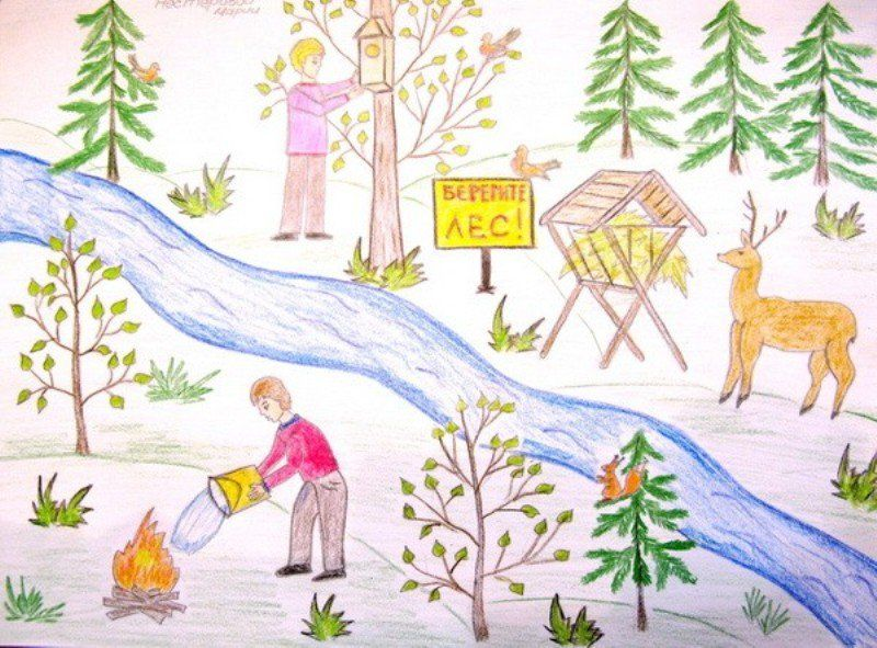 Юный эколог рисунок 8 фото