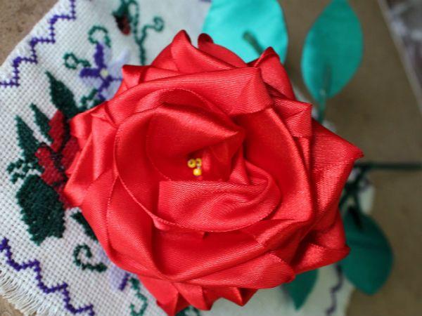 Собранная роза фото