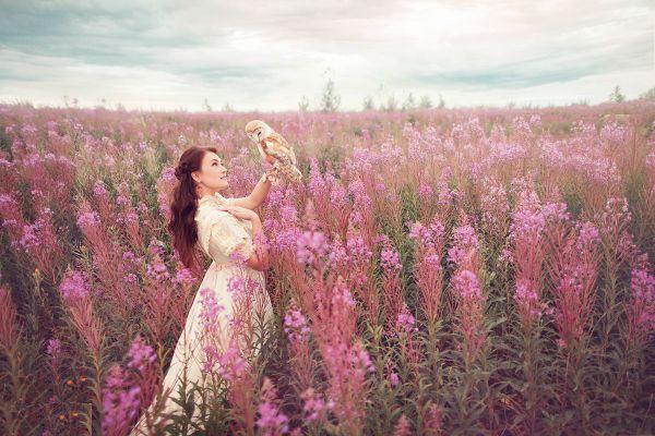 Розовое поле фото