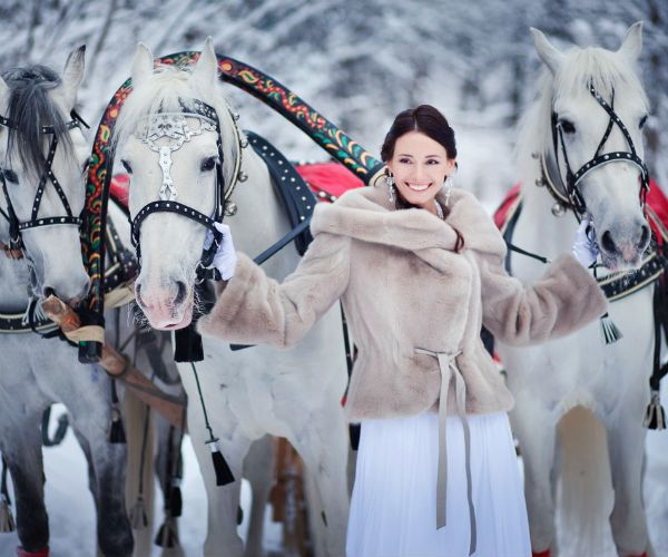 Тройка лошадей фото