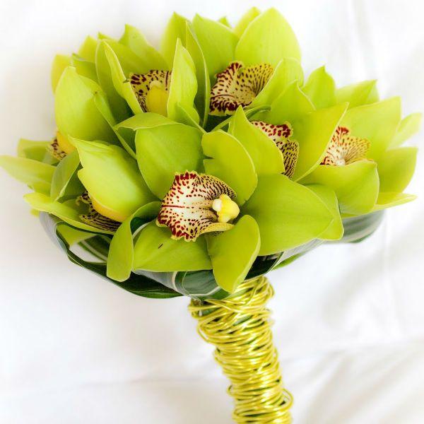 Букет из зеленых орхидей фото