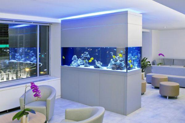Перегородка аквариум 2 фото