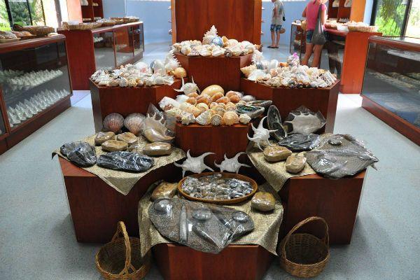 Музей даров моря на Бали фото