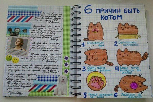 Рисунки котика фото