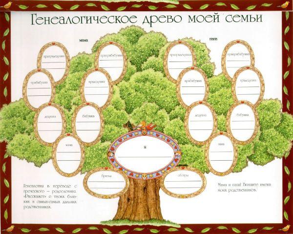Генеалогическое дерево семьи фото