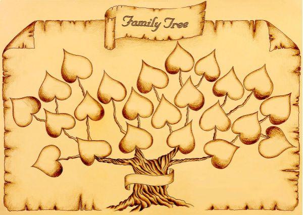 Оформления генеалогического дерева на пергаменте фото