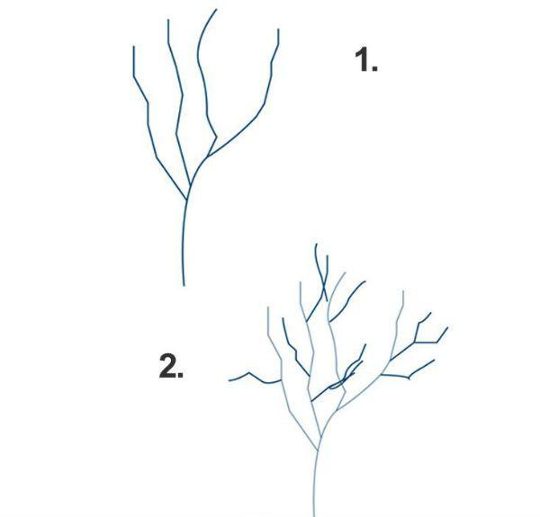 Дерево шаг 1 фото