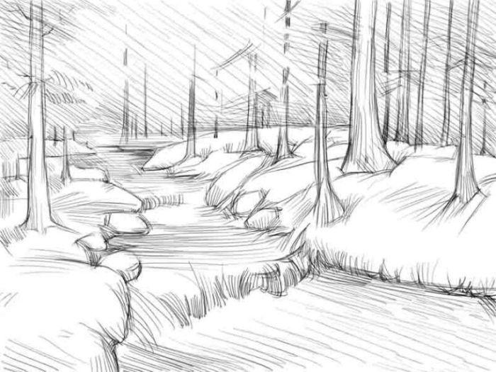 рисунки природы для срисовки